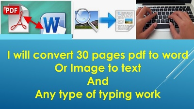 Do 30 pages Typing and PDF conversion