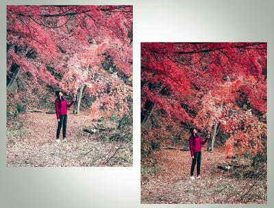retouch your 40 photos