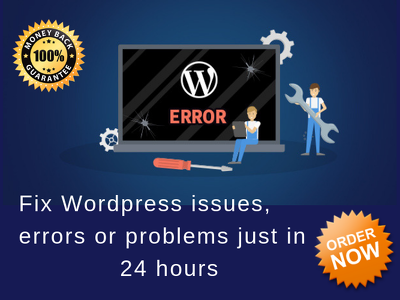 Fix Wordpress Issues, Errors Or Problems