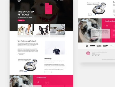 Custom responsive website + beautiful landing page