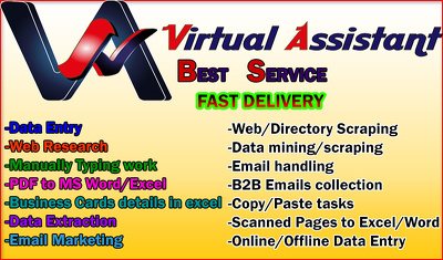 Provide 5 hours of  Virtual Assisting in Data Entry
