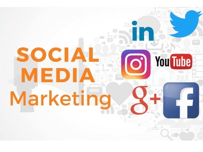 Be your social media manager for your business at low price