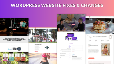 Provide 1 Hour of WordPress Website Fixes, Changes & Updates