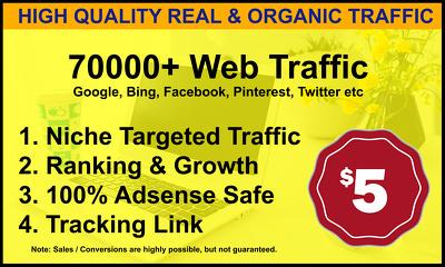 Drive 70,000+ Genuine Web Traffic For 30 Days
