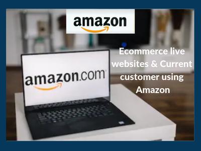 get list of all live E-commerce website using Amazon(Seller).