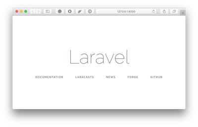 Fix any kind of Laravel issue for an hour