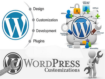Provide 1 hour customization to Wordpress theme