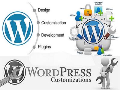 Provide 1 hour customization to Wordpress theme