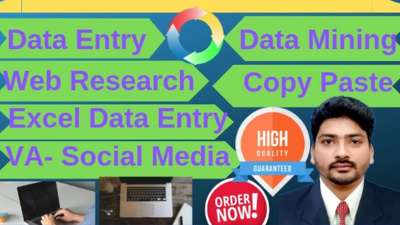 all type of Data entry work for 2 hour