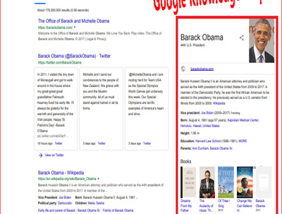 I Will Create Google Knowledge Graph / Panel  For You