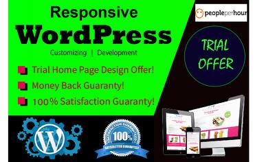 create Cost Effective Responsive WordPress Website