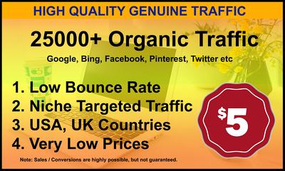 Drive 25,000+ Genuine Web Traffic For 30 Days