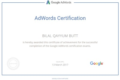 Create, Manage and Optimize Your Adwords PPC Campaigns (Search)