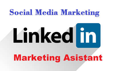 Be Your LinkedIn Marketing Consultant And Manager