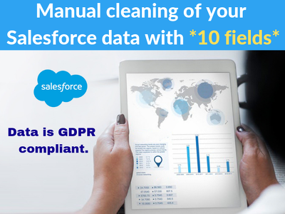 Manually clean your Salesforce data with 10 fields