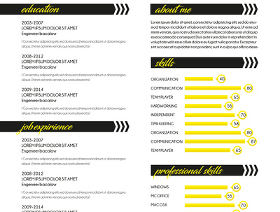 Design & Rewrite Resume / CV / Cover Letter in Infographic style