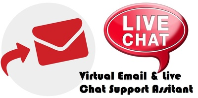 Provide 4 hours of email & chat support assistance, remotely