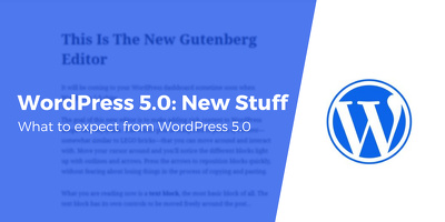 Check Gutenberg compatibility of your WordPress site