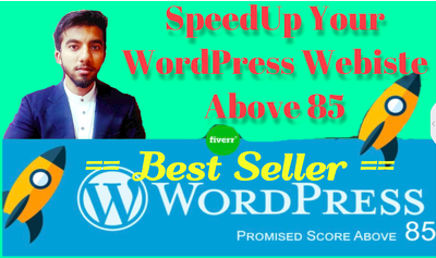 Speedup Your Website By Doing Wordpress Optimization upto 95