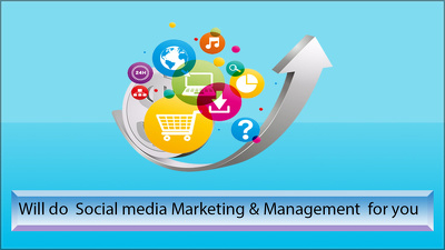 Be your social media marketer and manager for 5 days