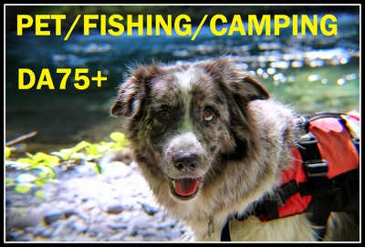 Guest post on Pet Sporting fishing camping DA75 Dofollow Blog