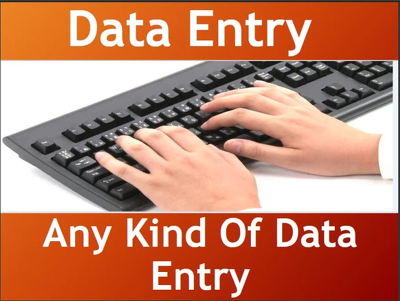 do 2 hrs of data entry, deliver within 24 hours