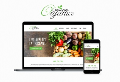I Will Design A Fully Responsive or custom Website ..