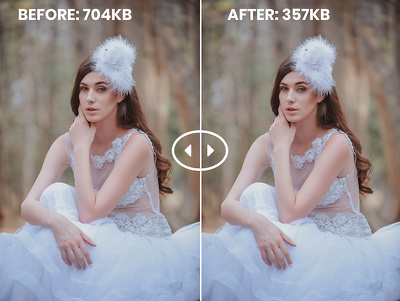 Optimize images for web. No loss in quality!           20 images