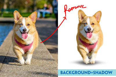 Photoshop clipping,shadow, remove and replacement background -30