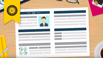 Create beautiful, professional CV resumes in 48 H