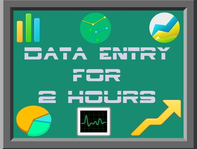 Do Any Type of Data Entry  and Deliver in One Working Day