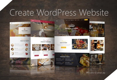 Develop Professional WordPress website