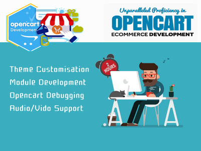 Provide 2 hours of Opencart Support, Customisation and debugging