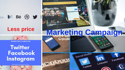 Run Marketing Campaign ,facebook , twitter and instagram