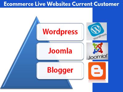 ecommerce Websites Current Customer using Wordpress, Wix etc