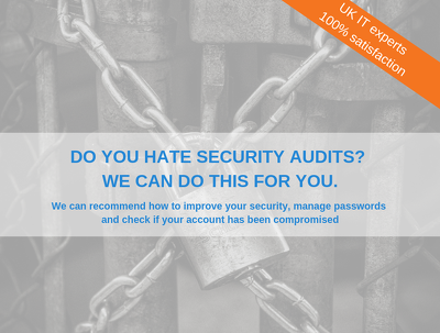 Provide an IT Security Audit Report