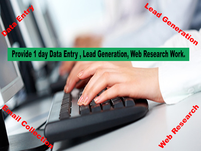 Provide 1 day Data Entry , Lead Generation, Web Research Service
