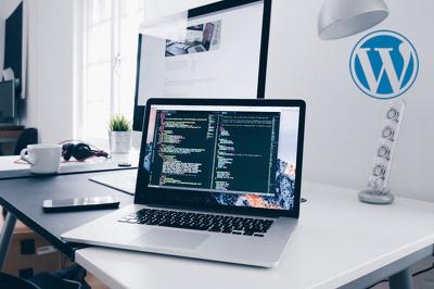Provide one hour of WordPress development
