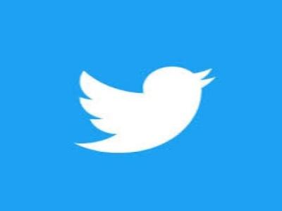 I Will Do Professional Twitter Marketing