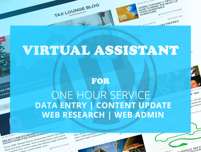 Do virtual assistant work, WordPress administrator for a hour