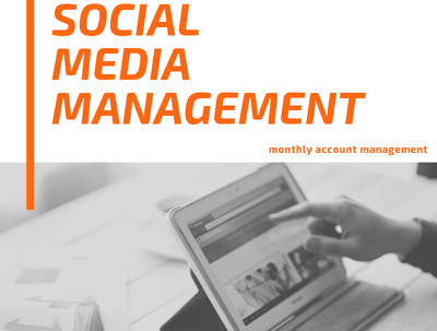 Manage and grow 3 social media channels
