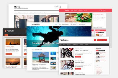 Design fast, responsive, Seo friendly Wordpress website in a day
