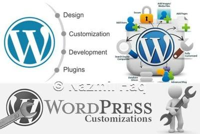 Do Any Wordpress Customization For You