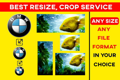 50 image resizing / Crop photos in your size