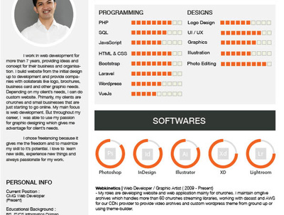 Create a professional looking CV in 2 days or less for £15