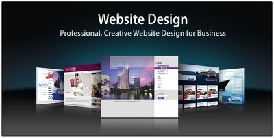 Design And Develop A Professional Website For You