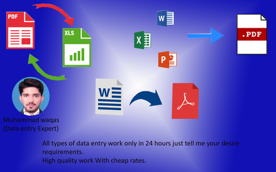 do all types of data entry work just in 24 hours