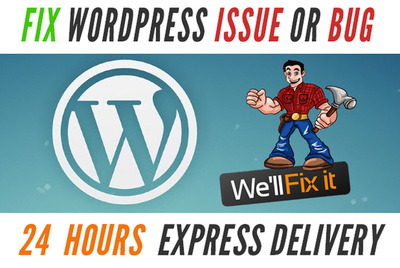 Fix any WordPress issues or errors