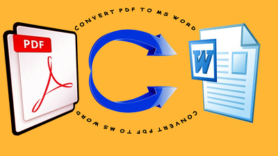 Convert pdf to ms word of 40 pages