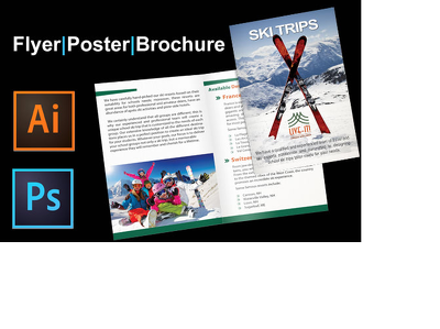 I Will Design Your Brochure, Flyer Or Other Promotional Material